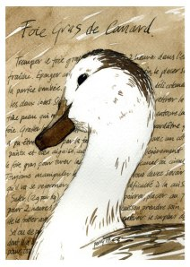 foie gras greeting card canard
