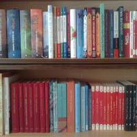 მოლის საბავშვო ბიბლიოთეკა
